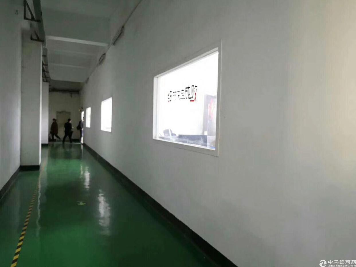 福永福海原房东厂房出租500平靠宝安大道地铁口