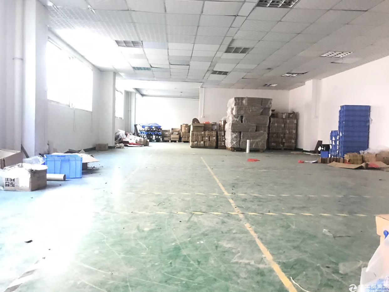 田寮松白路边新出精装修厂房