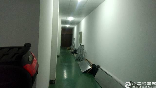 石排镇新出楼上600㎡,带豪华装修,水电齐全,不要转让费