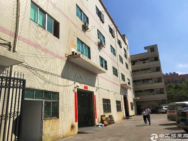 平湖新木一手房东厂房1200平方标准厂房出租,带精装修