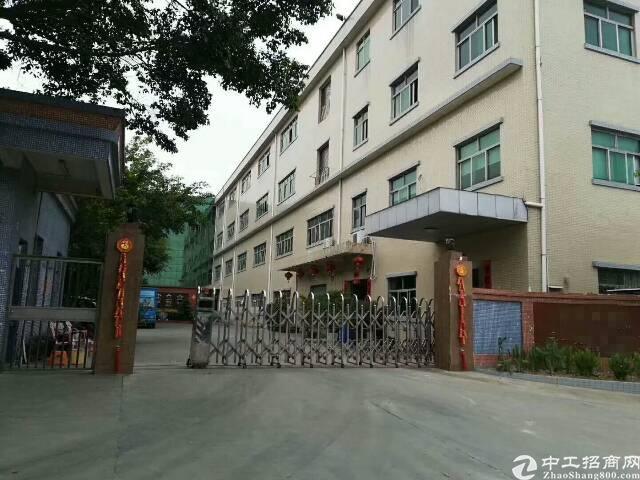 平湖清平高速出口原房东独门独院5000平方米厂房招租