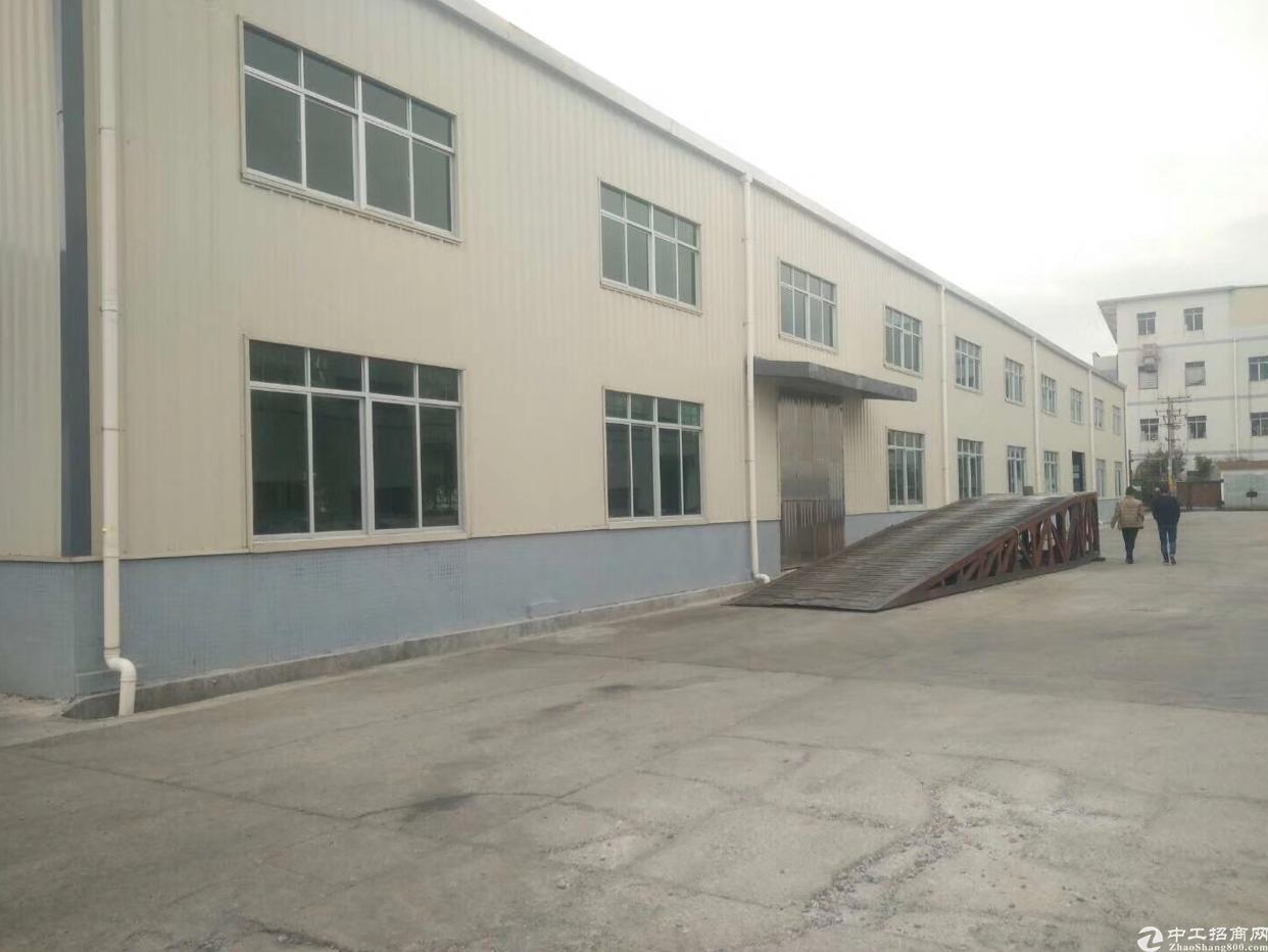 临深片区原房东钢构出租实际面积滴水10米