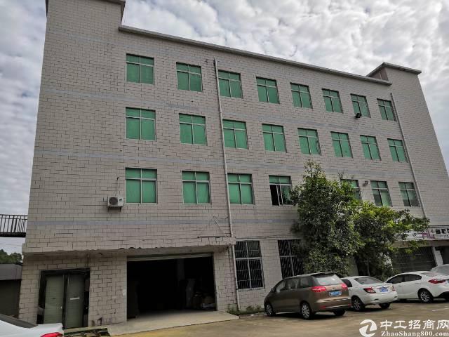 坪山碧岭原房东独栋红本厂房带装修出租3200平米