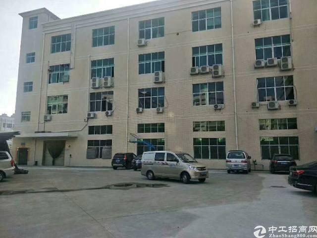 石排独门独院厂房,面积19000平方