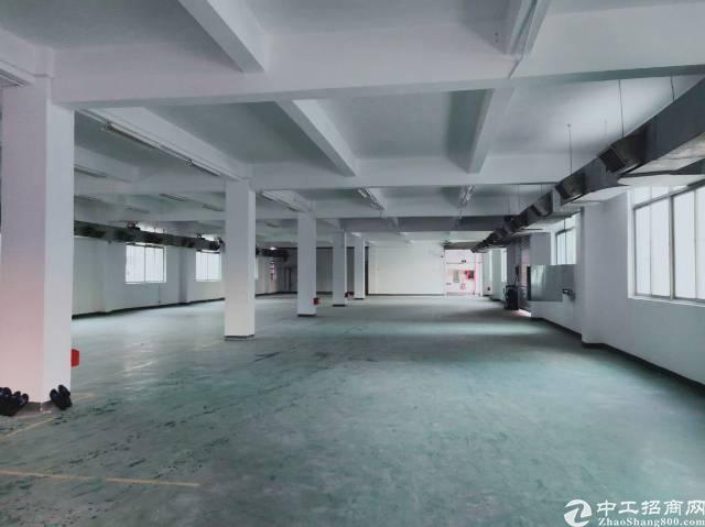 公明将石原房东厂房1楼1280平方厂房出租