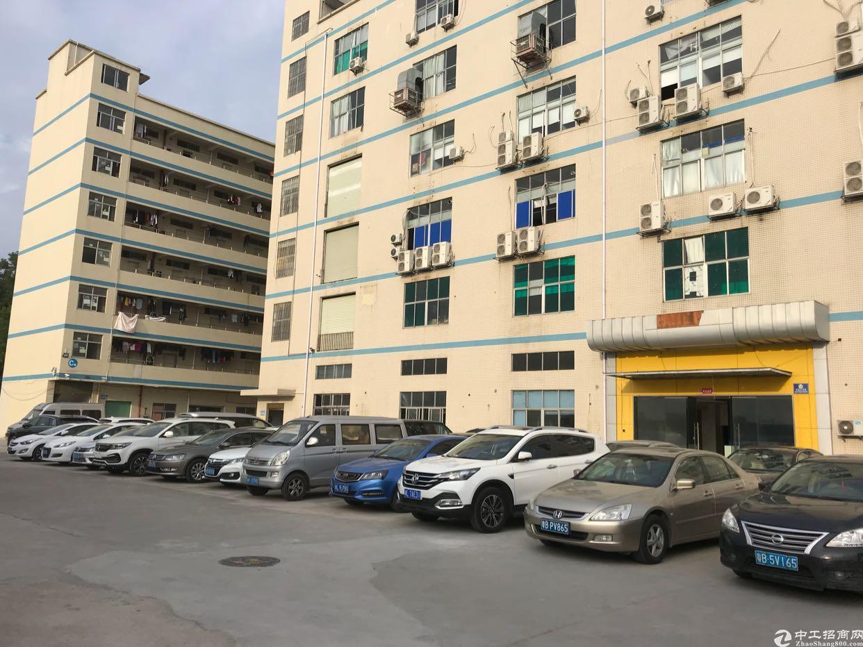 观澜樟坑径一楼标准厂房1200平方火爆招租中