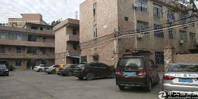 横岗标准厂房一楼650平实际面积出租报价23元1平方