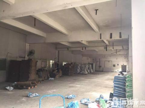 坑梓龙田工业区新空出一、二楼3500平方可大小分租