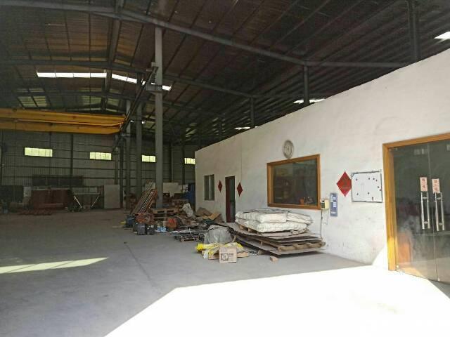 清溪镇单一层钢结构厂房3200平方-图5