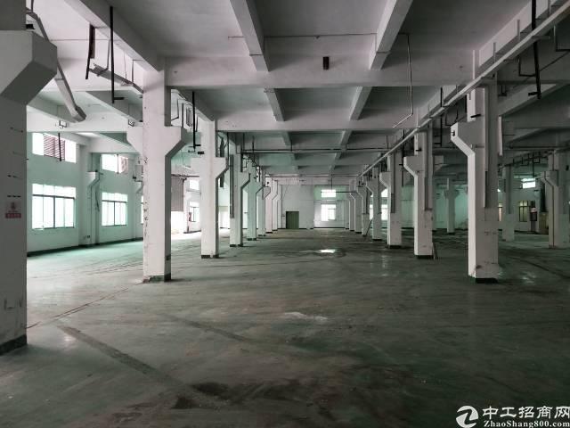 沙井新桥工业区大型工业园一楼1500平方厂房出租