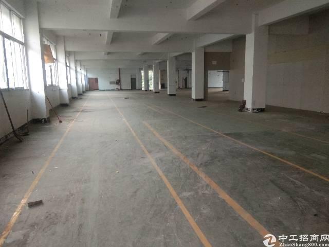 观澜新田楼上大型工业园内带装修车间2000平方招租