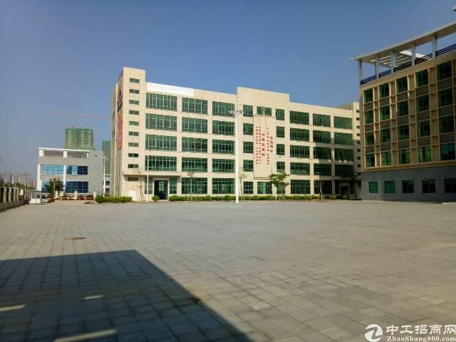 惠东白花新出工业园区内1.3楼厂房招租(带装修)