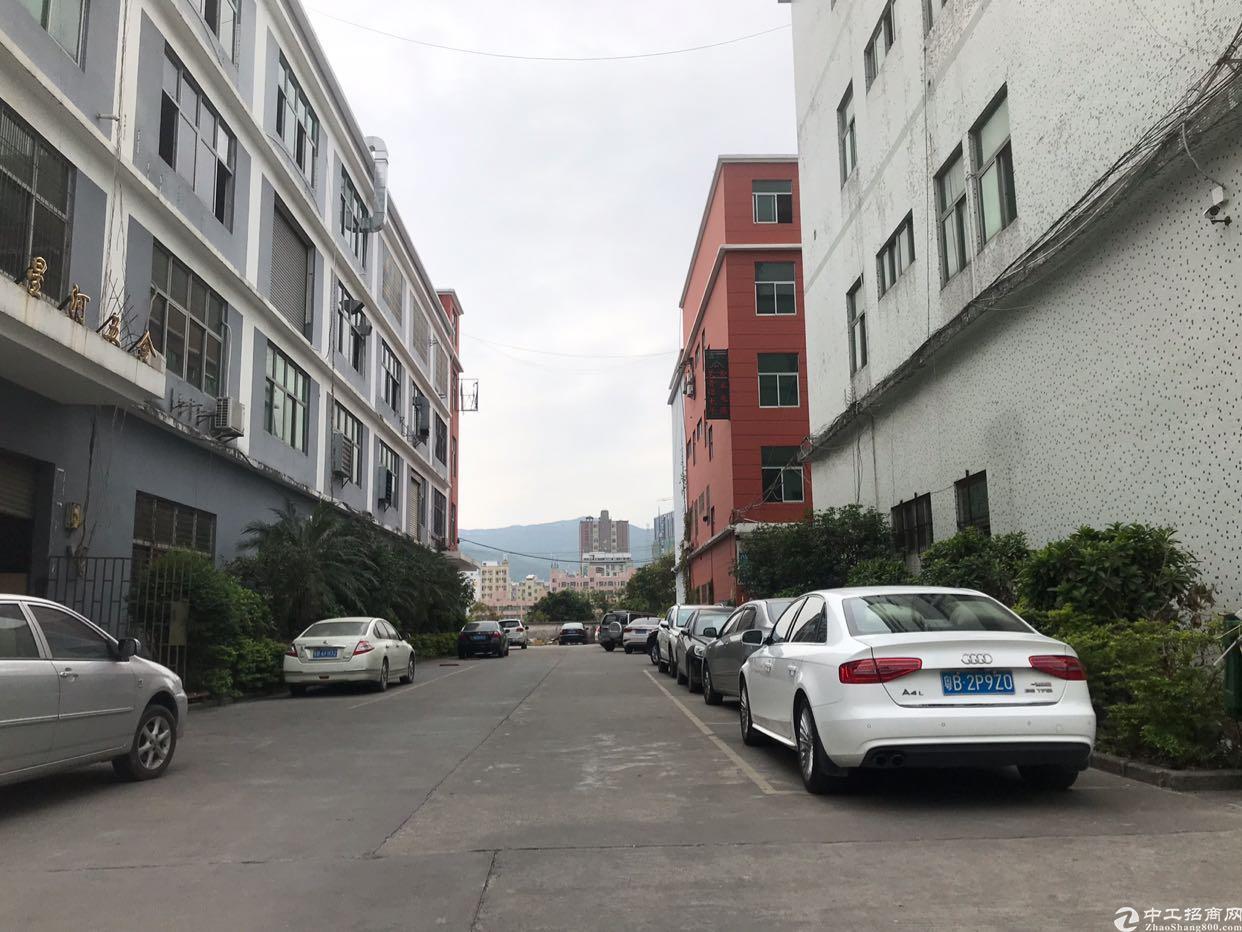 龙华商业中心旁新出1.2楼各1300平,报价28元,空地无限
