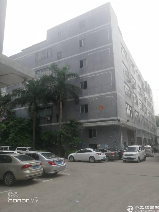 公明上村北环路边楼上精装修厂房860平米招租