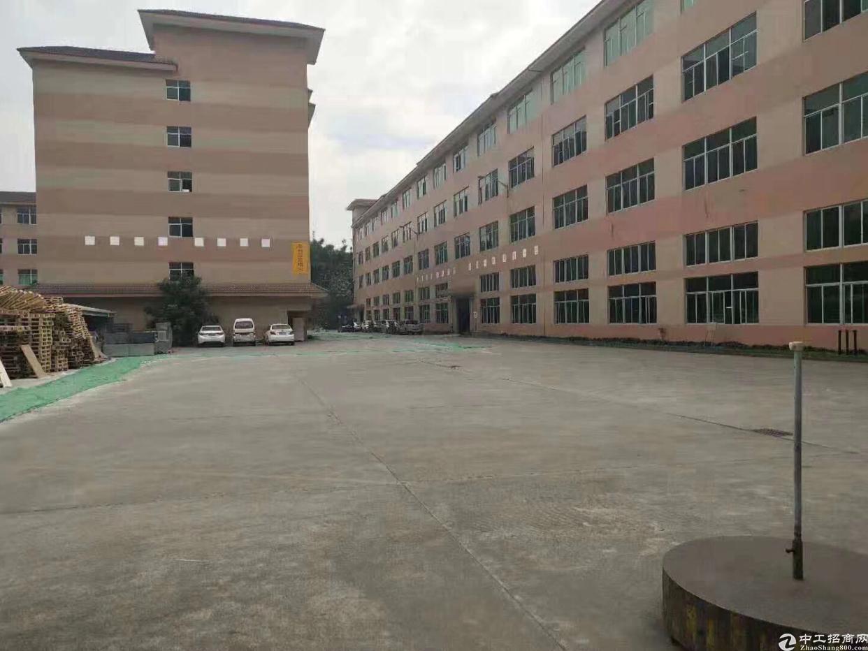 观澜福民观光路旁出楼上带办公室标准厂房800平出租