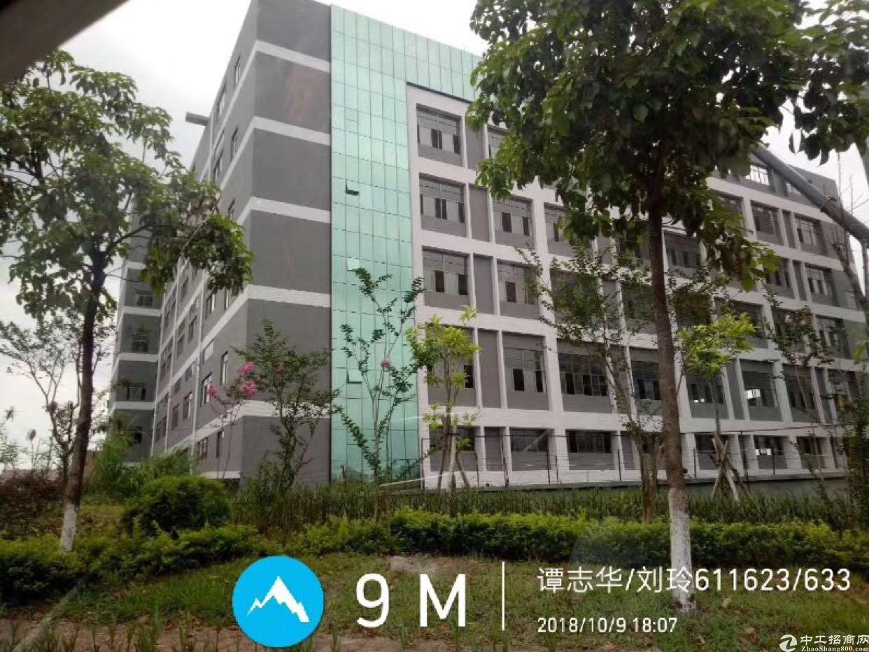 东莞清溪电商平台首选原房东全新厂房6万平方米可以分