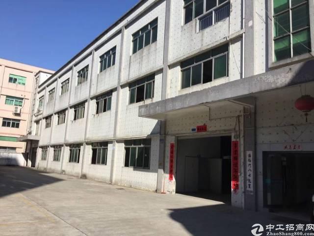 光明区原房东独院4000平米带装修办公室厂房出租