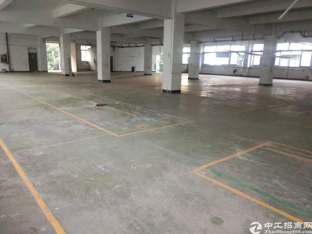 观澜新田楼上大型工业园内带装修车间2000平方招租-图4