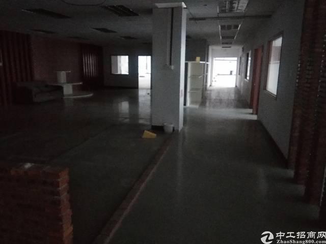 观澜新田楼上大型工业园内带装修车间2000平方招租-图7