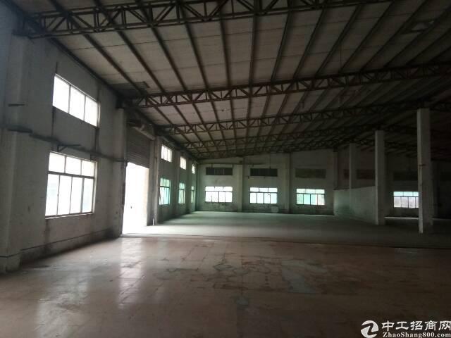 清溪大利新出敢12米钢构厂房15000㎡出租-图2