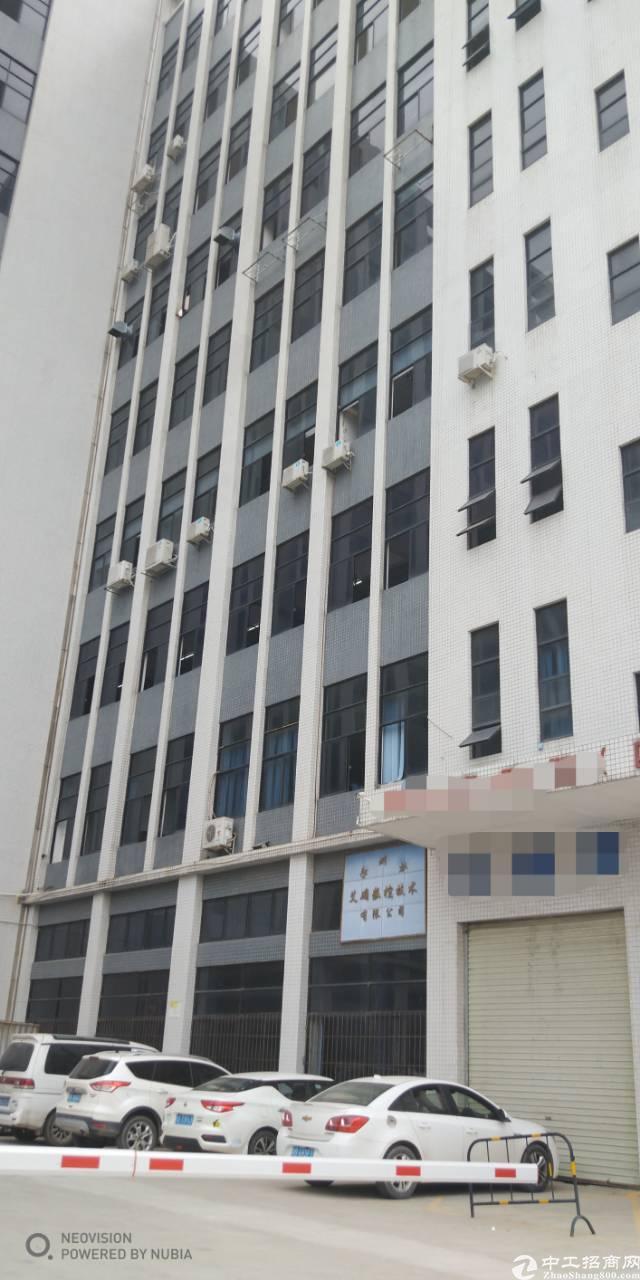 塘尾大型工业区一楼厂房出租