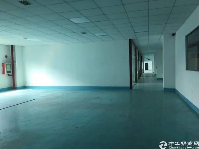 公明龙大高速出口3楼2600平方带装修18元厂房出租