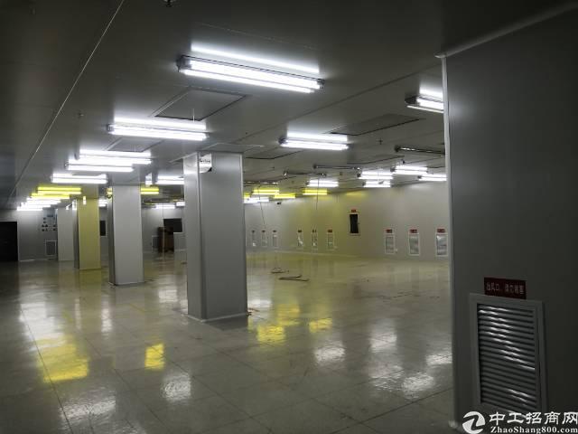 福永新出带精装修千级无尘车间厂房。形象非常漂亮,原来是韩国人