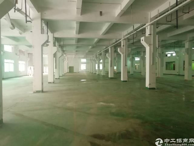 沙井后亭一楼厂房3400平方出租