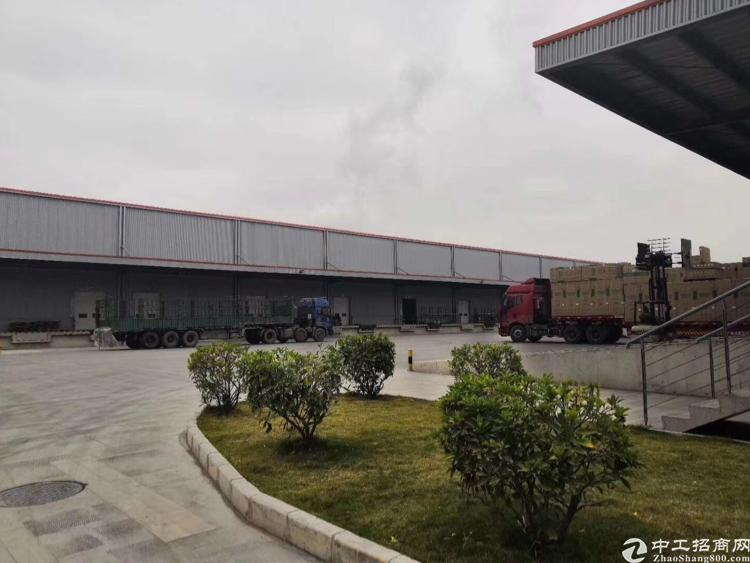 惠阳淡水原房东独院标准物流仓7800平,丙二类消防带卸货平台