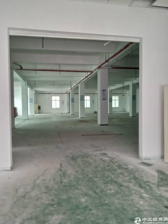 龙华大浪白云山新村标准厂房一楼。。。