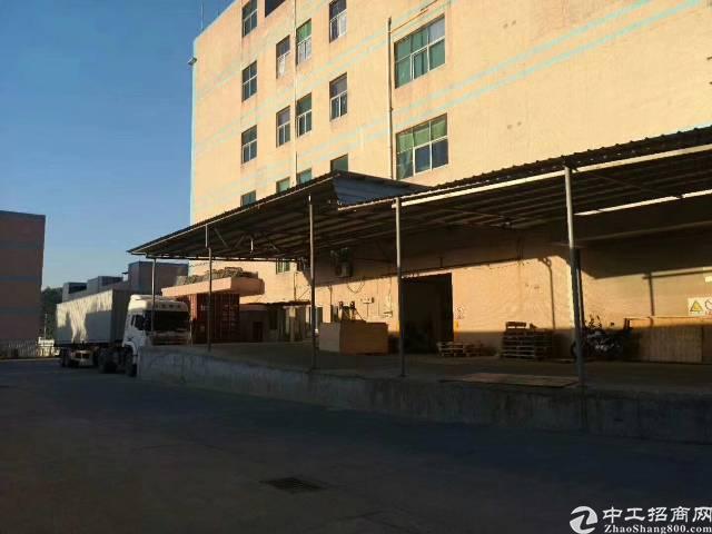 安良村委厂房空出一楼3600平可分租层高六米带标准卸货平台