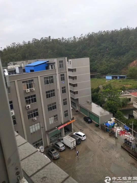 惠阳新圩工业园8400平方厂房出租