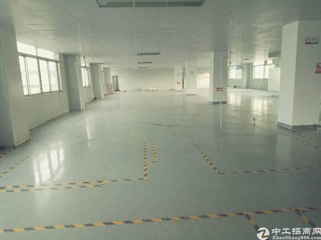 西乡鹤洲深业U中心旁现成办公室带装修车间800平