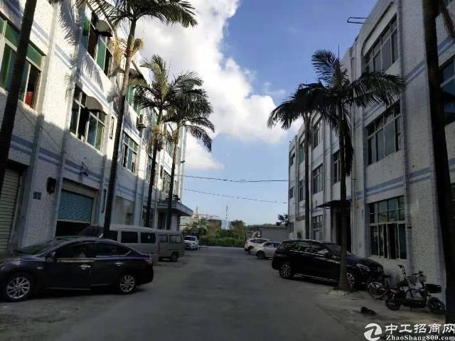 平湖富民工业区原房东标准厂房1200平带装修