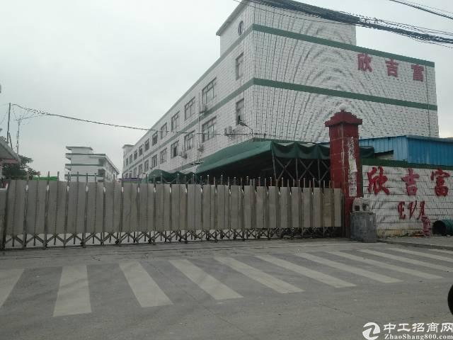 新圩镇府附近独院红本厂房出售,位置好,适合做幼儿园