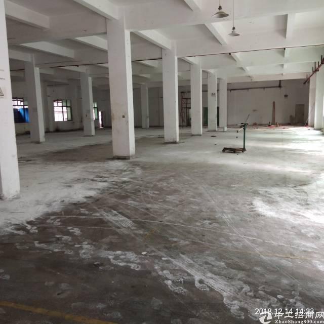 平湖新出原房东一楼1500平方,可以分租