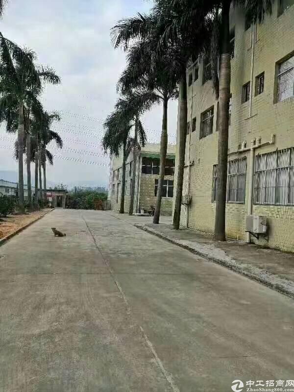 惠阳秋长钢构厂房12000平低价出售