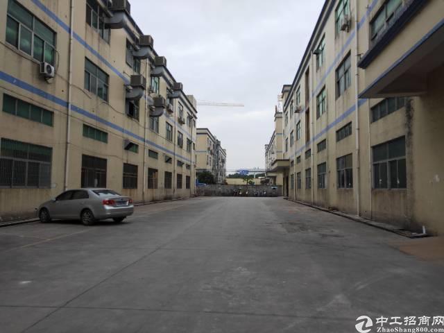 福永凤凰原房东红本独院厂房6000平米实际面积出租