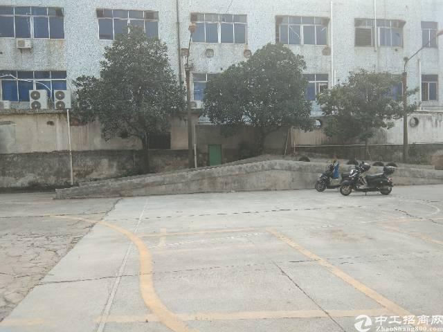 沙井东环路新出现成驾校训练场地2000平