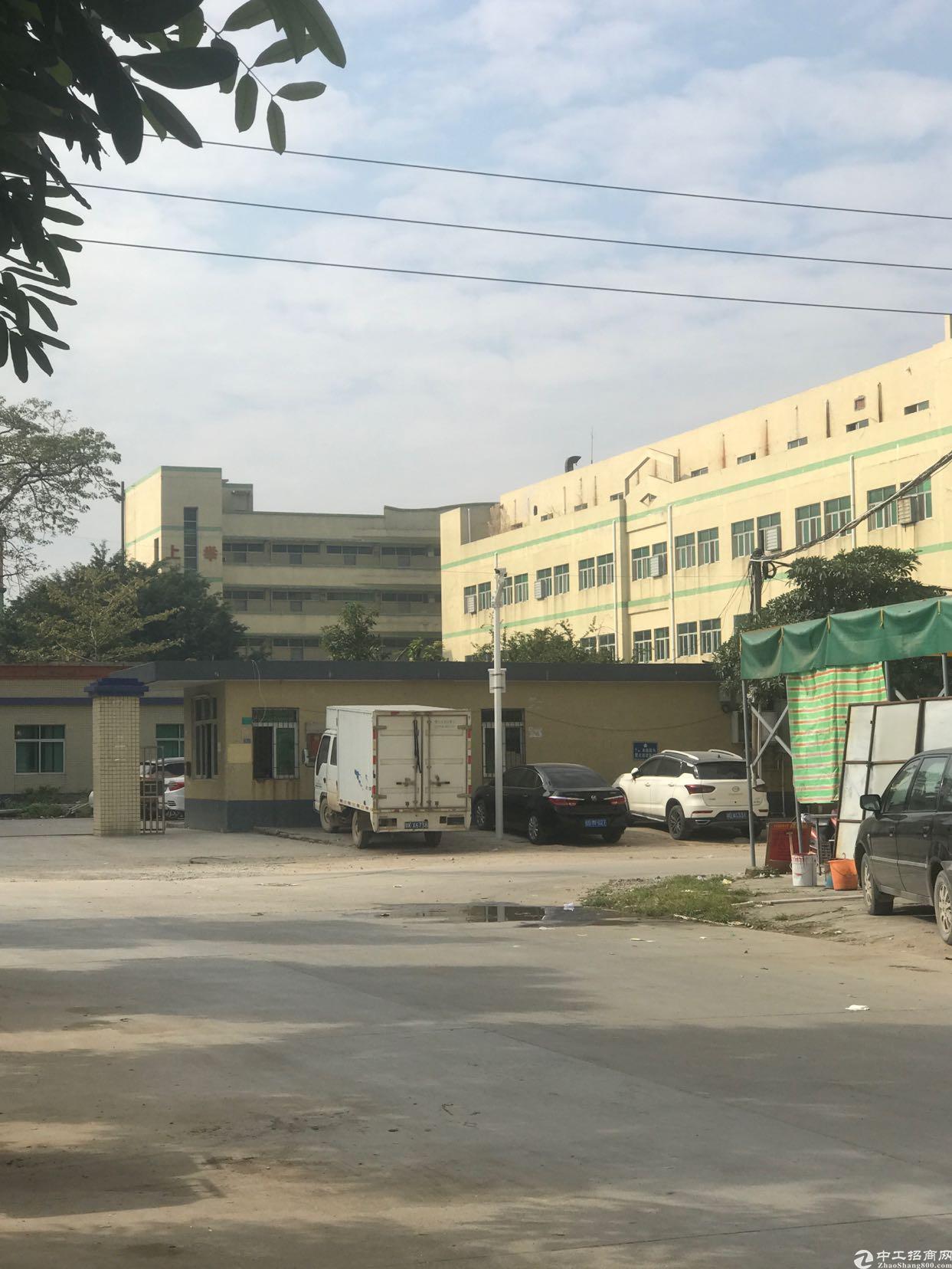 东莞桥头九成新厂房12800平方出售