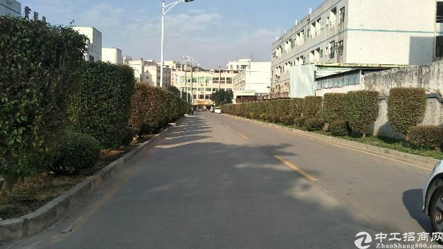 平湖辅城坳一楼仓库出租300平米,19元一平米