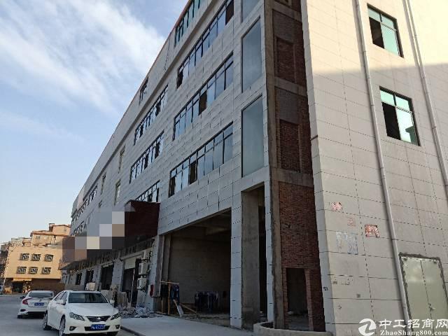 园洲镇全新标准厂房火爆招租中