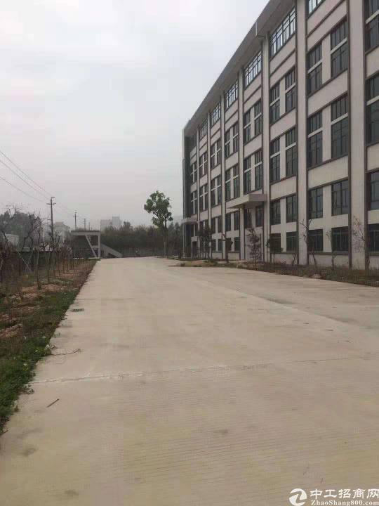 石岩新出厂房2500平带装修带红本可以办环评交通方便