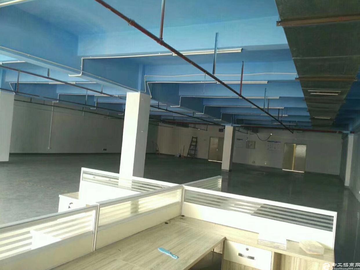 [原房东]宝山新出楼上865平方精装修出租