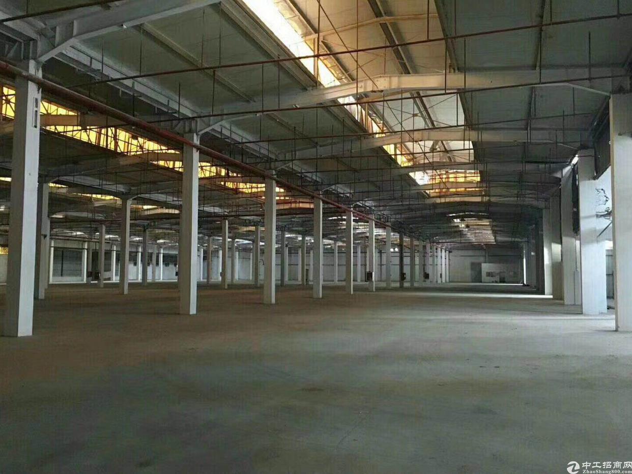 坪山10米钢结构厂房10000平方米出售