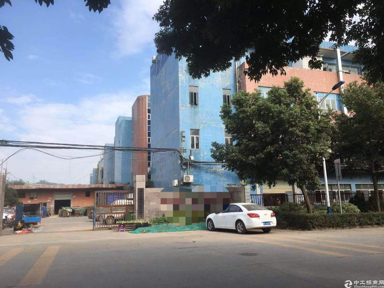 坪山新区龙田社区同富裕工业区标准厂房一楼500平大小可分