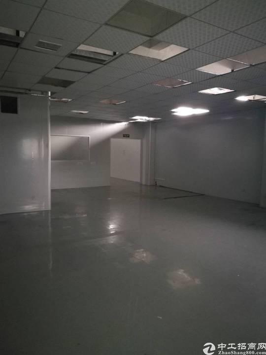 兴东新空出带装修无尘车间厂房出租。