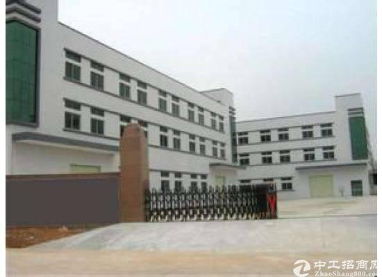 惠东县白花镇新出花园式独院红本33000平米厂房