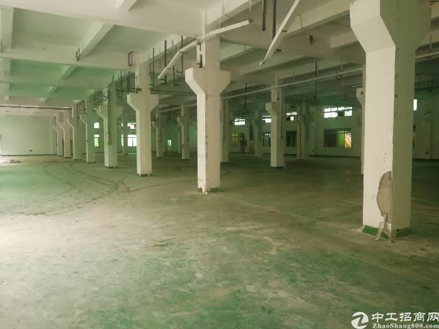 松岗107国道边原房东一楼厂房3000平方出租