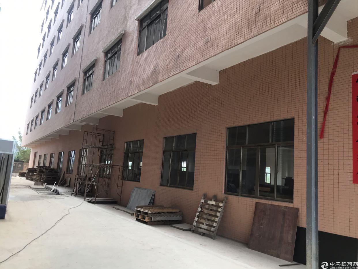 惠东白花省道边单层面积1100平方厂房出租